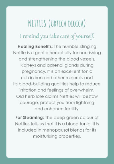 Womb Medicine Healing Cards – *pre order now